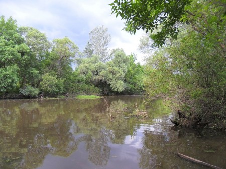 Csodálatos a táj, szinte érintetlen, igazi Amazonas!