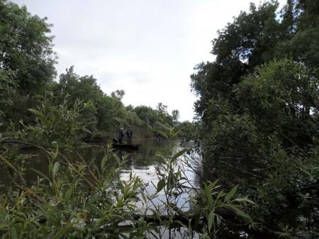 """Ilyen a Zsaró - a Bodrog menti """"Amazonas"""""""
