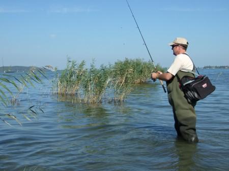 Kifelé horgászva