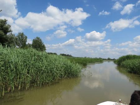 """Pár méter széles """"vízi ösvény"""" vezetett a nyílt víz felé"""