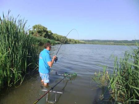 Annak ellenére, hogy nád elől horgásztunk a pontyok nem mentek bele, mert túl sűrű volt a méretükhöz