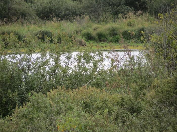 A Balátó-tó ma is lefolyástalan