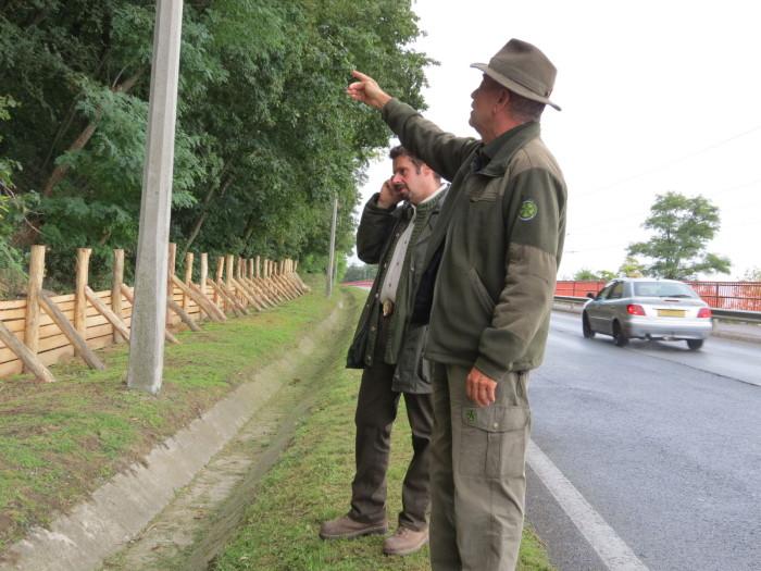 Stábunk a helyszínen kérdezte az erdőgazdaság illetékeseit arról, hogy miért érzik fontosnak a beavatkozást -