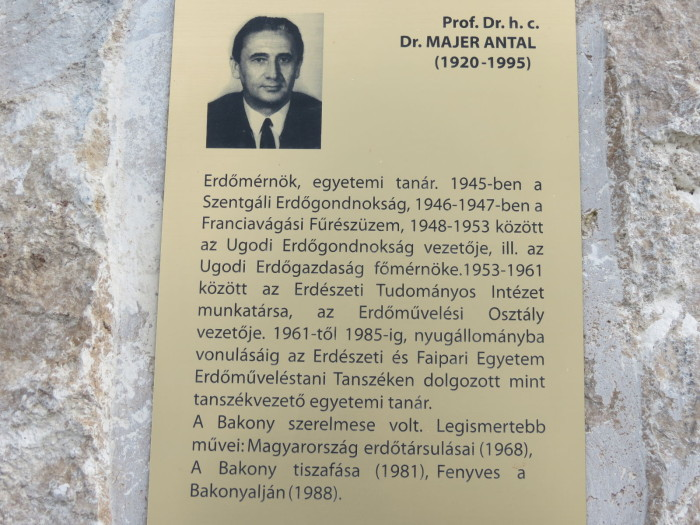 Dr. Majer András