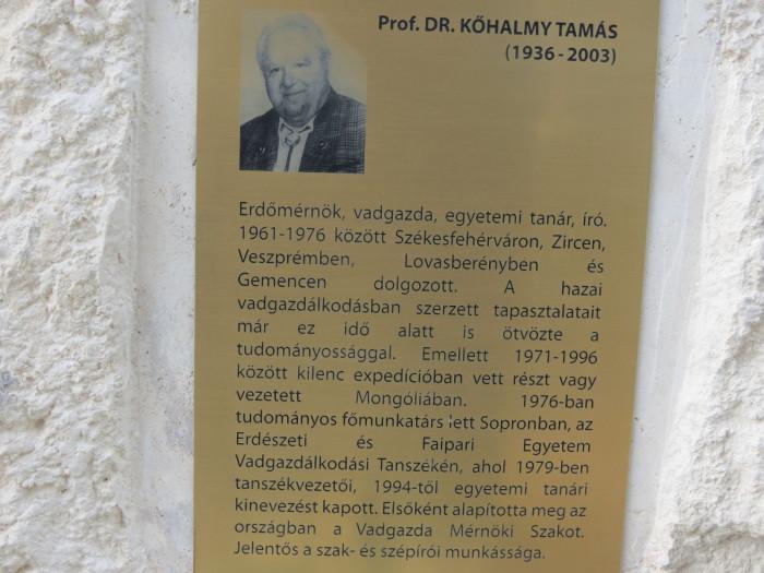 Prof.Dr.Kőhalmy Tamás