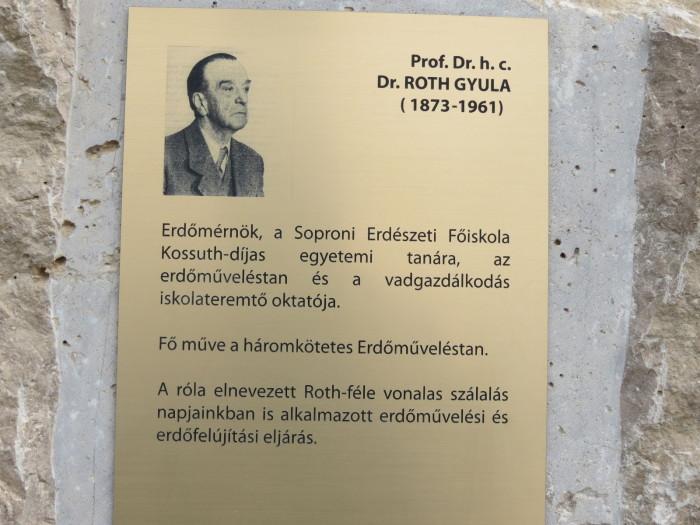 Dr. Roth Gyula
