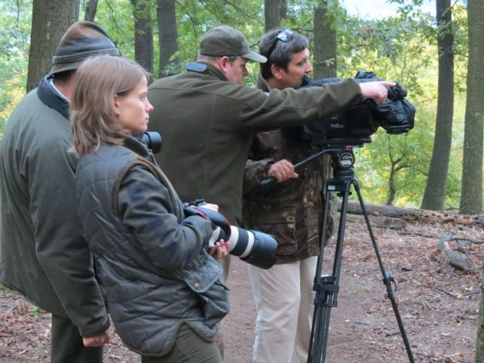"""Szerettük volna bemutatni Nézőinknek, hogy mi történik ilyenkor a """"dámos"""" erdőkben - 2"""