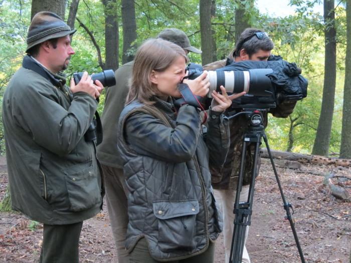 """Szerettük volna bemutatni Nézőinknek, hogy mi történik ilyenkor a """"dámos"""" erdőkben"""