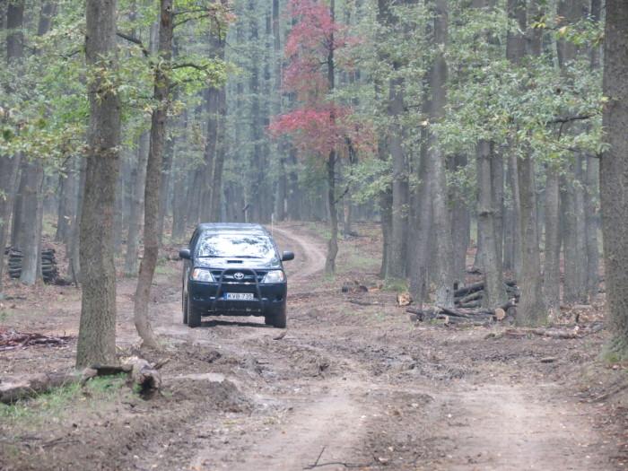 Újra terepjáróba szálltunk és a következő úti cél irányába fordultunk, hiszen Óbíródon a Tamási Erdészet munkatársai már vártak minket