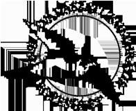 VKE_logo