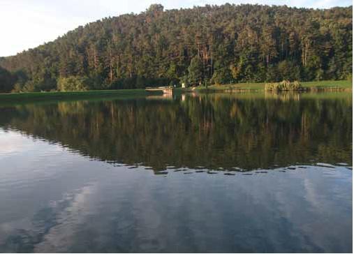 A parkolóban kiszállva azonnal megfogott minket a tó szépséges környezete: jóllehet az egyik oldala mentén forgalmas út futott végig, a szemben lévő part csodálatosan zöld, lankás dombokkal szegélyezett, a vízig szelíden lejtő meseország képében integetett felénk