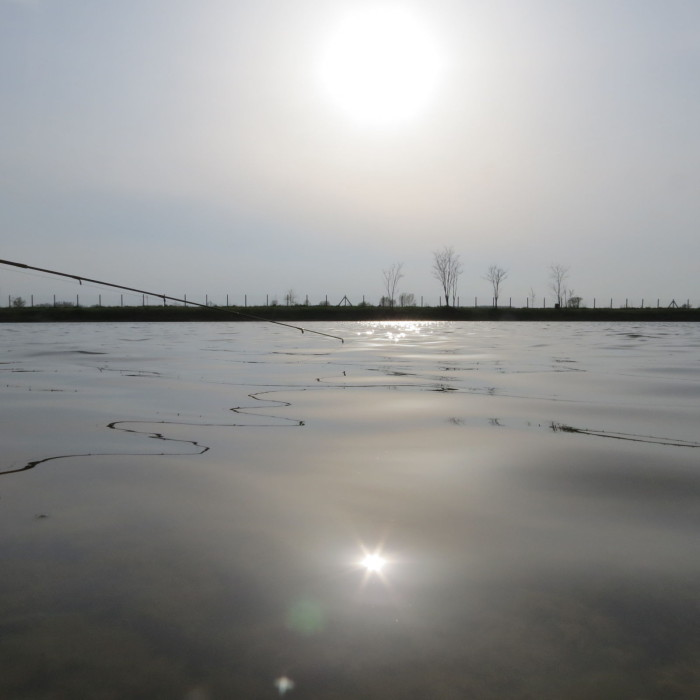 Pickerspicc a lemenő Nap fényében